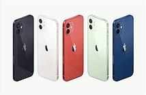 Trải nghiệm sớm 4 phiên bản iPhone 12 bằng công nghệ AR