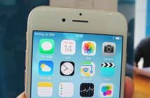 Các điểm bán iPhone 6 xách tay đồng loạt hạ giá