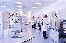 Con người có khả năng bất tử bằng công nghệ truyền máu?