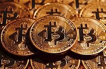 Bitcoin hồi phục ấn tượng, xác lập kỷ lục 8000 USD