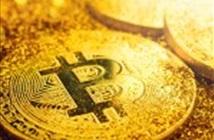 Giá Bitcoin thiết lập kỷ lục mới, gần chạm mức 8.000 USD