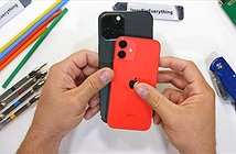 iPhone 12 Pro Max và 12 Mini xuất sắc vượt qua bài kiểm tra độ bền