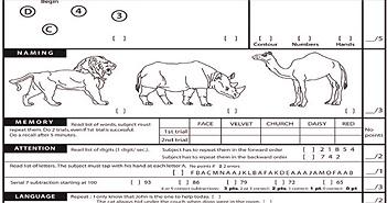 Tìm hiểu về bản trắc nghiệm kiểm tra khả năng nhận thức của Tổng thống Trump