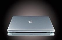 Lựa chọn laptop tối ưu cho startup và văn phòng nhỏ