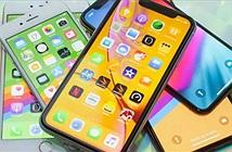 Cùng có giá 16 triệu, nên chọn iPhone XR hay iPhone 8 Plus