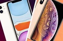Mua iPhone mới 99% giá dưới 16 triệu đồng: Chọn XS Max hay iPhone 11?