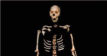 Phát hiện ADN người cổ xưa nhất có thể viết lại lịch sử tiến hóa của loài người