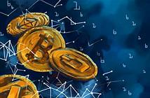 Hai điều cần làm khi toàn thị trường crypto lao dốc