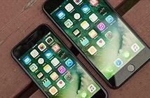 Phát hiện Apple đang âm thầm phát triển iPhone 9 Plus