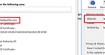 Google Chrome 59 sẽ khắc phục hoàn toàn lỗi liên quan đến Punycode
