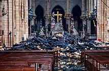 Hồi sinh nhà thờ Đức Bà Paris bằng robot tối tân?