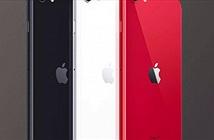 101 lý do để mua iPhone SE 2020 ngay lúc này