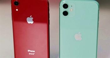 Chọn ai giữa iPhone SE 2020, iPhone Xr và iPhone 11?