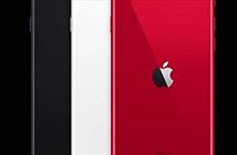 Đã có giá iPhone SE 2020 xách tay và chính hãng tại VN, chênh nhau 700.000 đồng
