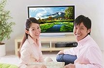 VTC cho khách hàng mới xem 45 ngày miễn phí tất cả các gói kênh