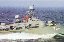 Việt Nam đã xuất khẩu những vũ khí nào ra thế giới?