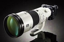 Sony đang phát triển ống kính prime 400mm cho Sony A9?