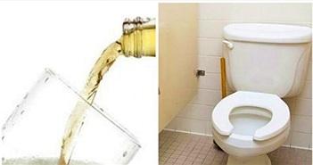 Đổ bia vào nhà vệ sinh tưởng lãng phí ai ngờ chuyện lạ xảy ra