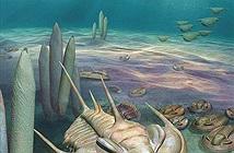 Chân dung bọ bạo chúa kích thước khổng lồ vừa tìm thấy