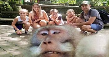 """Khách chụp ảnh gia đình, khỉ """"thành tinh"""" lao đến chiếm sóng"""