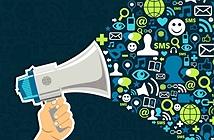 Bộ TT-TT tập trung quản lý chặt chẽ thông tin trên blog, mạng xã hội