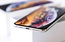 iFan sững sờ trước thông tin về thiết kế iPhone 11 sắp ra mắt