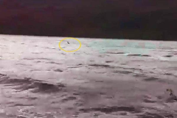Xuất hiện video rõ nét nhất về sự xuất hiện của quái vật hồ Loch Ness