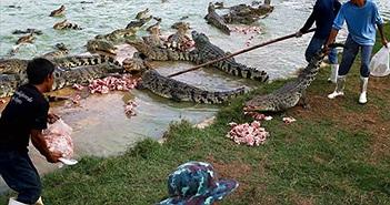 Bé trai 10 tuổi bị cá sấu ăn thịt trước mặt anh chị ruột