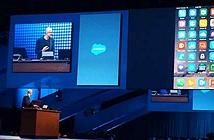 CEO của Microsoft hết lời ca ngợi iPhone