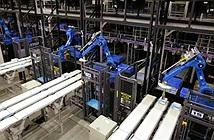 Robot cứu nguy cho nền kinh tế già cỗi của Nhật Bản