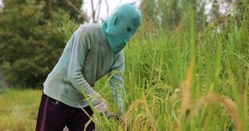 Người phụ nữ Trung Quốc đeo mặt nạ suốt 10 năm