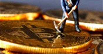 Ấn Độ: Hàng loạt web chính phủ dính đào tiền mã hóa
