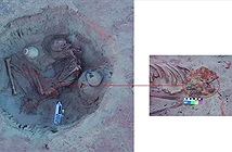 Nhà khảo cổ choáng khi phát hiện vật lạ cạnh hài cốt phụ nữ 3.700 năm tuổi