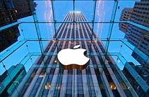 Apple bị phạt 234 triệu USD do vi phạm bản quyền