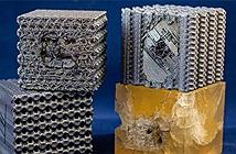 In 3D nhựa theo cấu trúc tubulane cực kỳ phức tạp, một khối nhựa chống được cả đạn