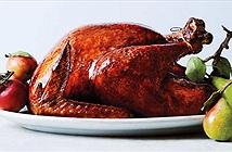 Vì sao gà tây là món truyền thống của lễ Tạ Ơn?