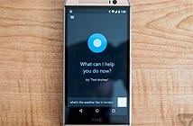 Microsoft sẽ khai tử ứng dụng Cortana trên iOS và Android tại một số quốc gia từ tháng 1/2020