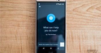"""Microsoft sẽ """"khai tử"""" ứng dụng Cortana trên iOS và Android tại một số quốc gia từ tháng 1/2020"""