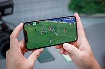 iPhone 12 Pro Max nhận giải Màn hình smartphone tốt nhất từ DisplayMate