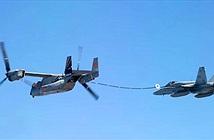 """""""Chim ưng biển"""" MV-22 thử nghiệm tiếp dầu cho """"Ong bắp cày"""" F-18"""