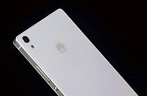 Huawei sẽ loại bỏ dòng smartphone Ascend - P8 và D8 sắp ra mắt