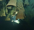 Khám phá hang động chứa đầy chuông tử thần ở Mexico
