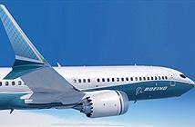 Tại sao máy bay lại được lắp những chiếc cánh lượn (Winglet)?