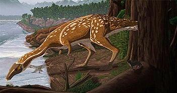 Phát hiện hoá thạch siêu hiếm của khủng long cổ dài họ hàng với T-rex