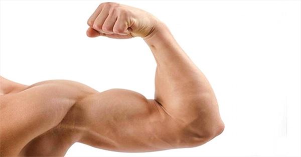 Phát hiện ra liệu pháp gene mới giúp giảm mỡ, tăng cơ