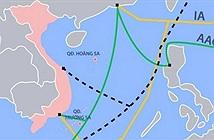 Cáp quang biển vì sao liên tục gặp sự cố?