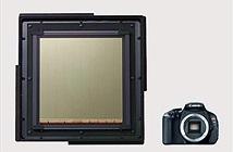 Canon phát triển cảm biến ảnh to gấp 5 lần một chiếc máy ảnh