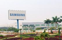 Samsung muốn bắt tay các nhà mạng Việt Nam triển khai 4G