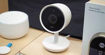 CEO của Nest từ chức sau khi công ty được sát nhập với Google Home