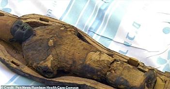 Các nhà khoa học không thể tin vào mắt mình khi nhìn ảnh chụp CT xác ướp 3000 tuổi, bên trong có gì vậy?